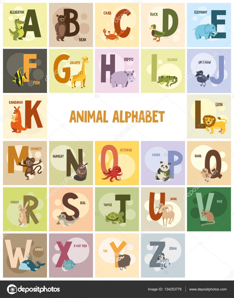 Image of: Vector Illustration Alphabet Names And Animals On Colored Backgrounds Stock Illustration Depositphotos Alphabet Names And Animals On Colored Backgrounds Stock Vector