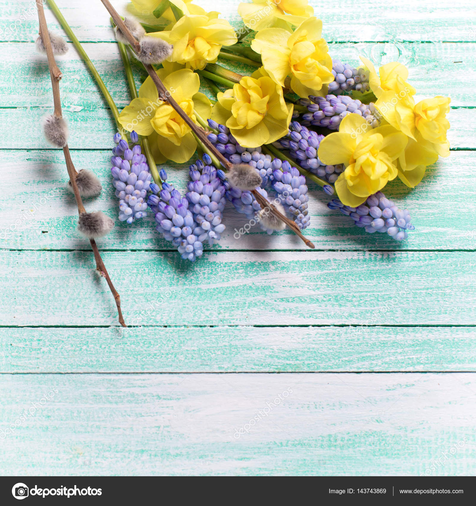 Spring Flowers On Wooden Background Stock Photo Daffodil 143743869