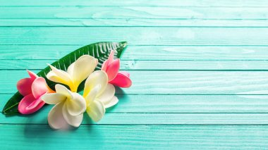 Tropical plumeria flowers on wooden background