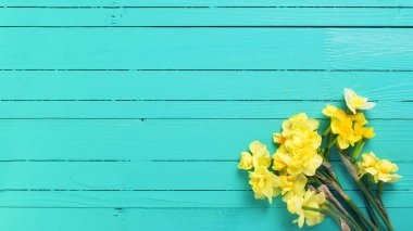 Yellow daffodil flowers on wooden background