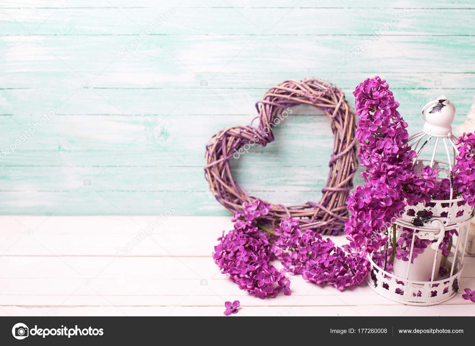 Pareti Viola E Lilla : Fiori viola lilla cuore decorativo lanterna sulla parete fondo