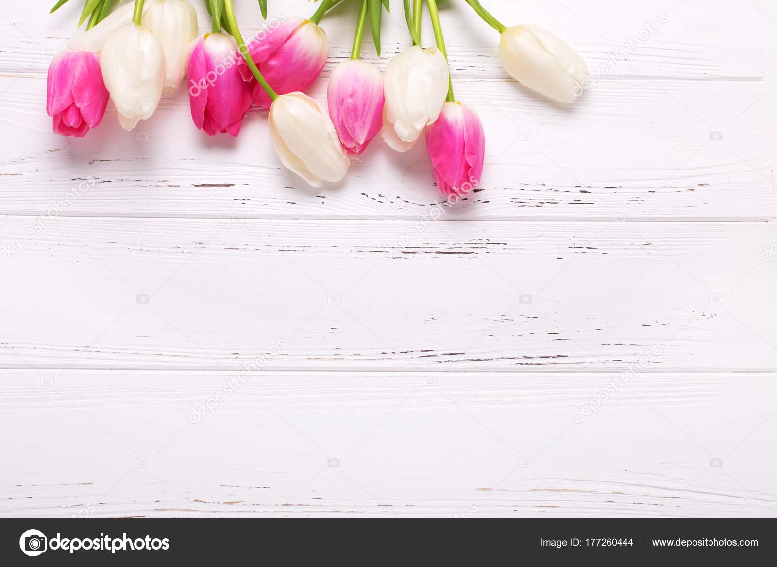 Fondo De Madera Vintage Con Flores Blancas Manzana Y: Flores Tulipanes Color Rosa Blanco Sobre Fondo Madera