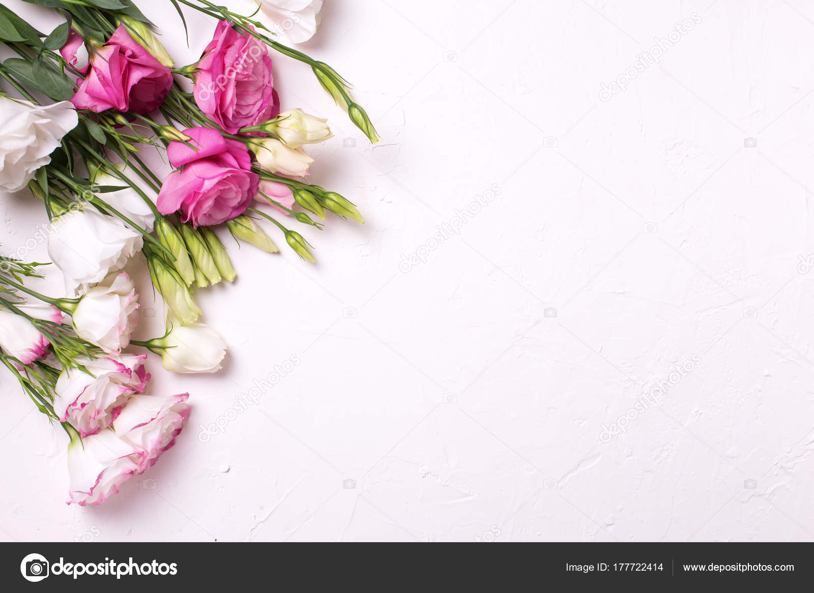 Bunch Pink White Eustoma Flowers White Textured Background Stock