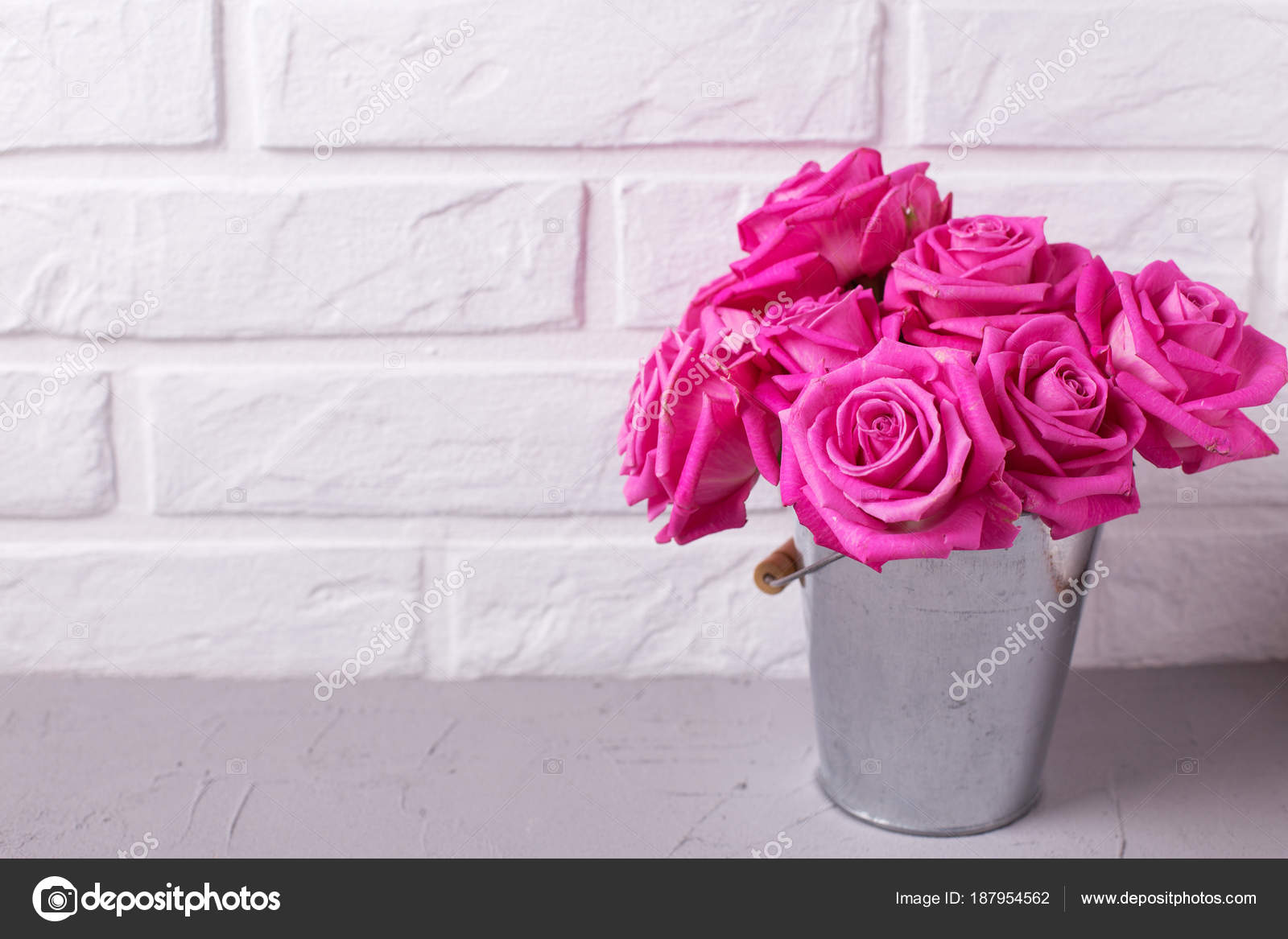 Bright Pink Roses Flowers Bucket Grey Background White Wall Selective Stock Photo C Daffodil 187954562