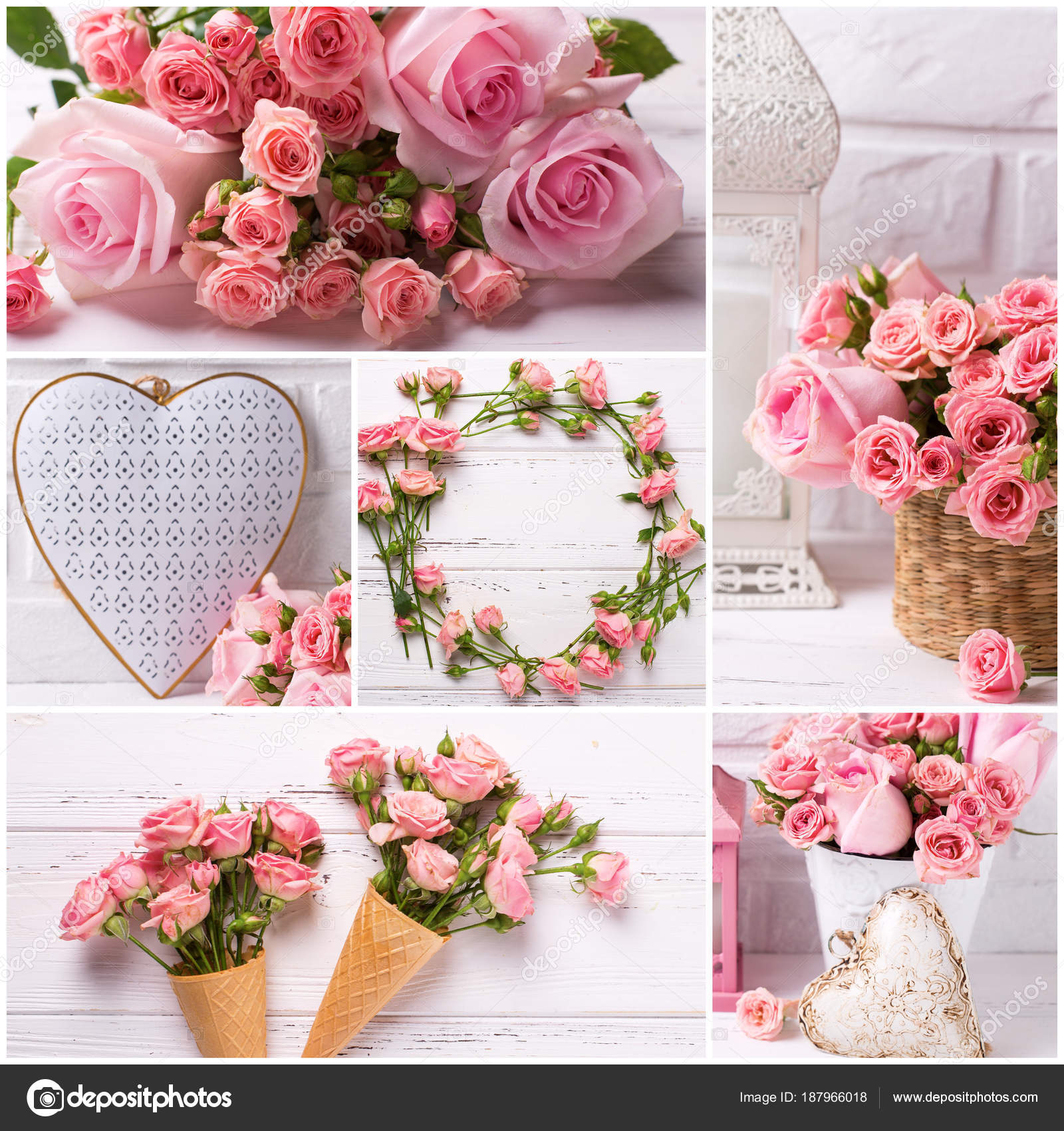 Collage Photos Tender Pink Roses Flowers Decorative Hearts Light