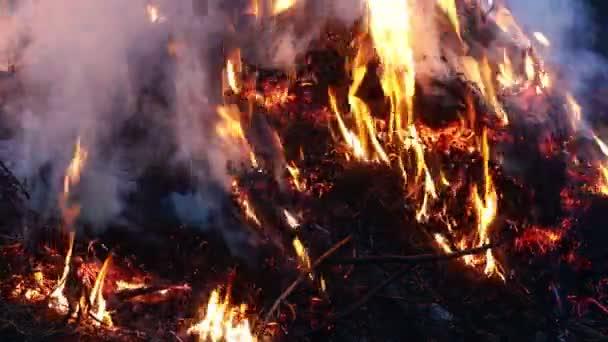 V posledních letech suchá tráva hoří, doutná a kouří detailní up