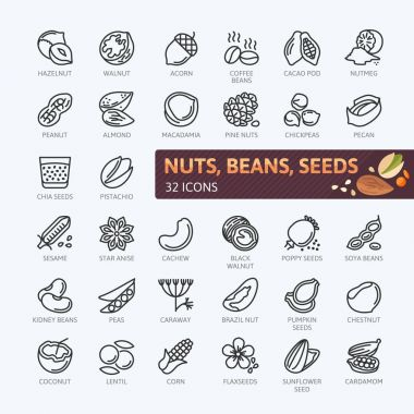 Nuts, seeds and beans elements - minimal thin line web icon set. Outline icons collection. Simple vector illustration.