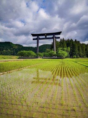 The world's largest torii gate at the entrance of the sacred site of the Kumano Hongu Taisha on the Kumano Kodo pilgrimage trail in Wakayama, Japan