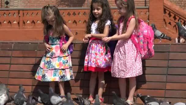 Školní děti krmení holubů