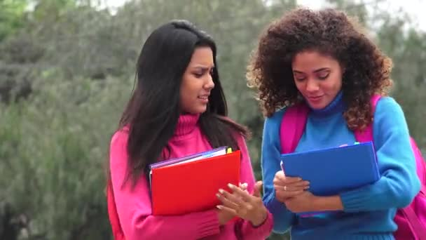 Female Teen Students With Notebooks
