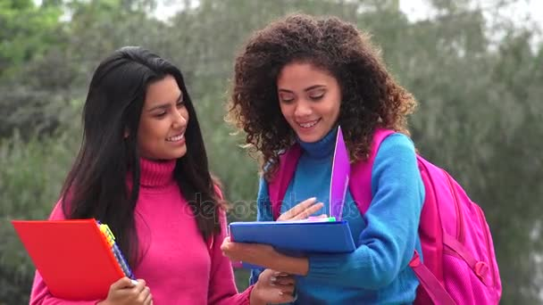 Happy Female Teen Students With Notebooks