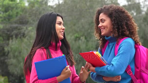 Hispanic Female Teen Students Socializing