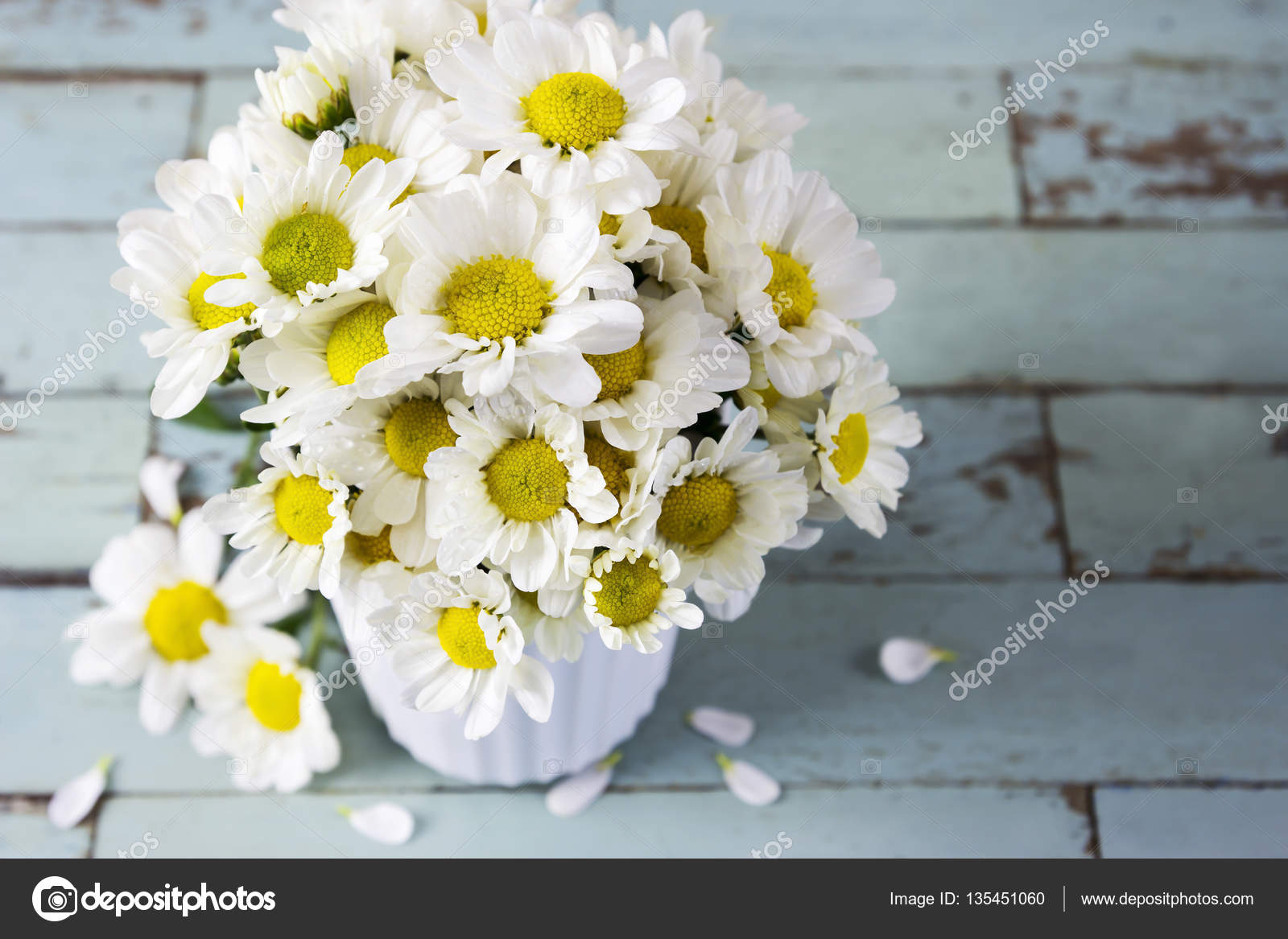 Fresh Daisy Flowers In White Cup On Wooden Table Stock Photo
