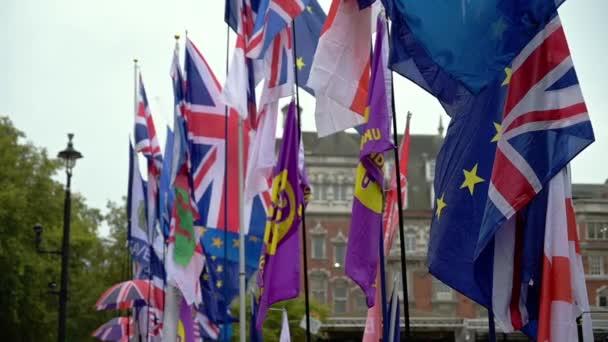 LONDON - OCTOBER 23, 2019: Brexit demonstration with flags waving in slow motion in the breeze outside the Houses of Parliament