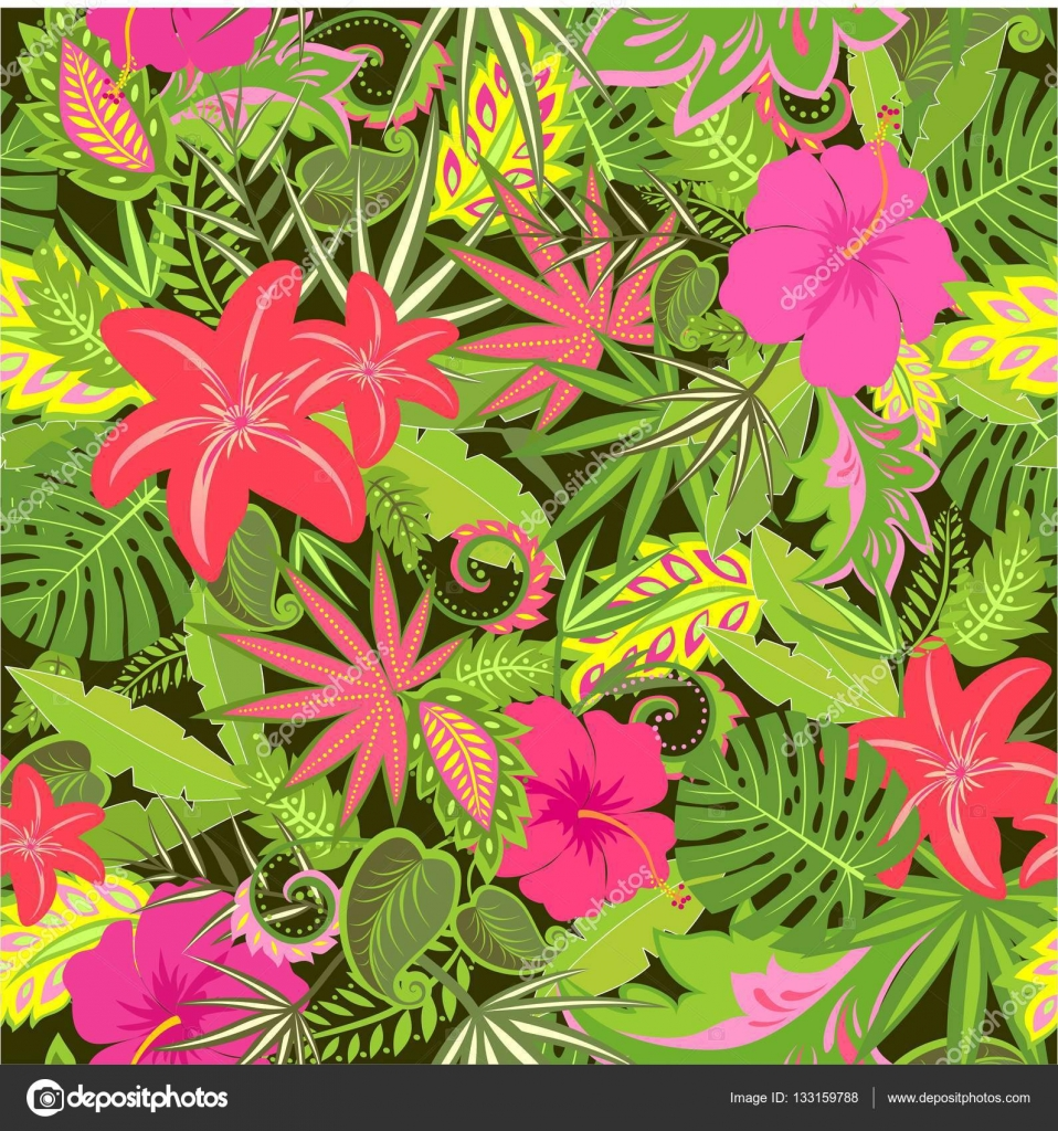 Wallpapers Hd Flores Exoticas Best HD Wallpaper