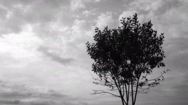 Donkere Stormachtige Wolken Met Een Heleboel Verlichting Nachtelijke ...