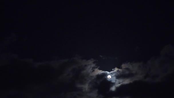 Úplněk a noční obloha