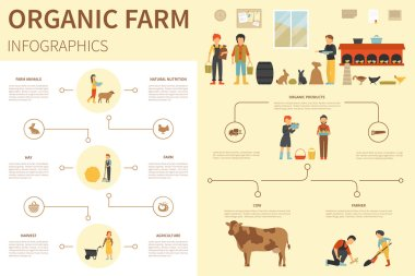 Organic Farm infographic flat vector illustration. Presentation Concept