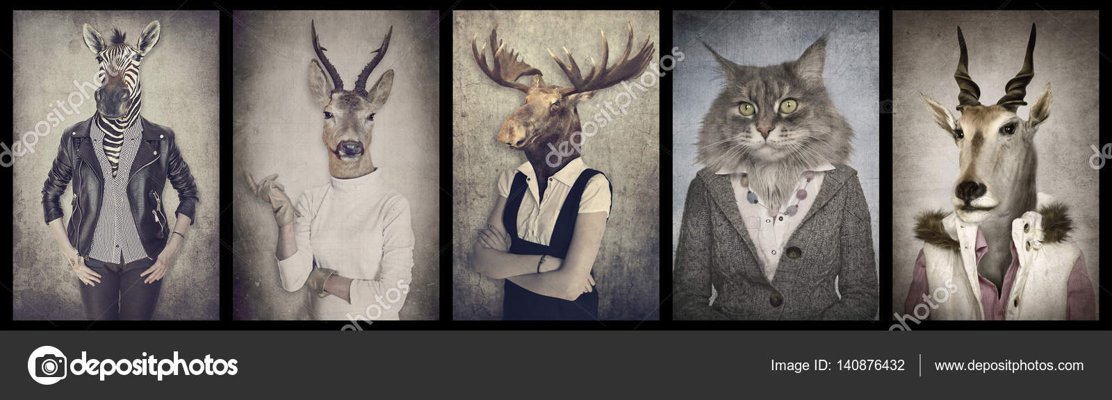 Animals Clothes Concept Graphic Vintage Style стоковое фото