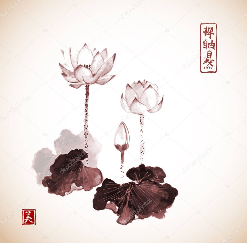 Hand Drawn Lotus Flowers Stock Vector Elinacious 130499138