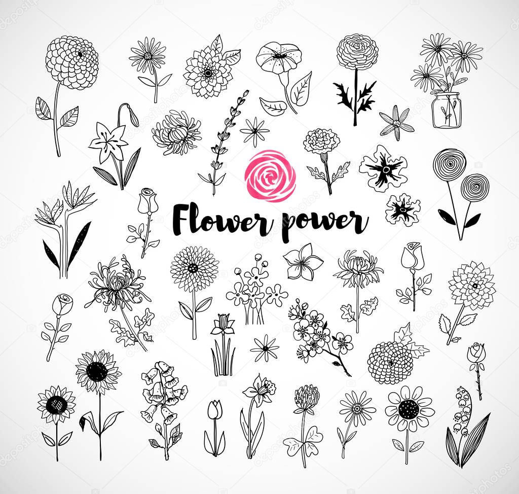 Set of doodle flowers
