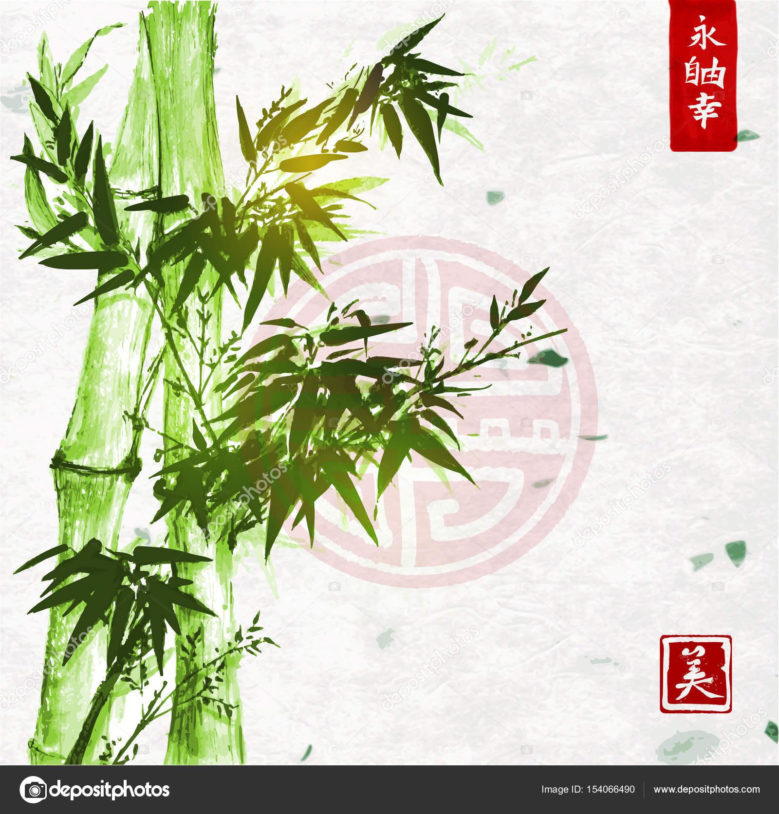 Bambus In Der Traditionellen Japanischen Malerei Stil Sumi E Auf Weißem  Hintergrund, Vektor Illustration U2014 Vektor Von Elinacious