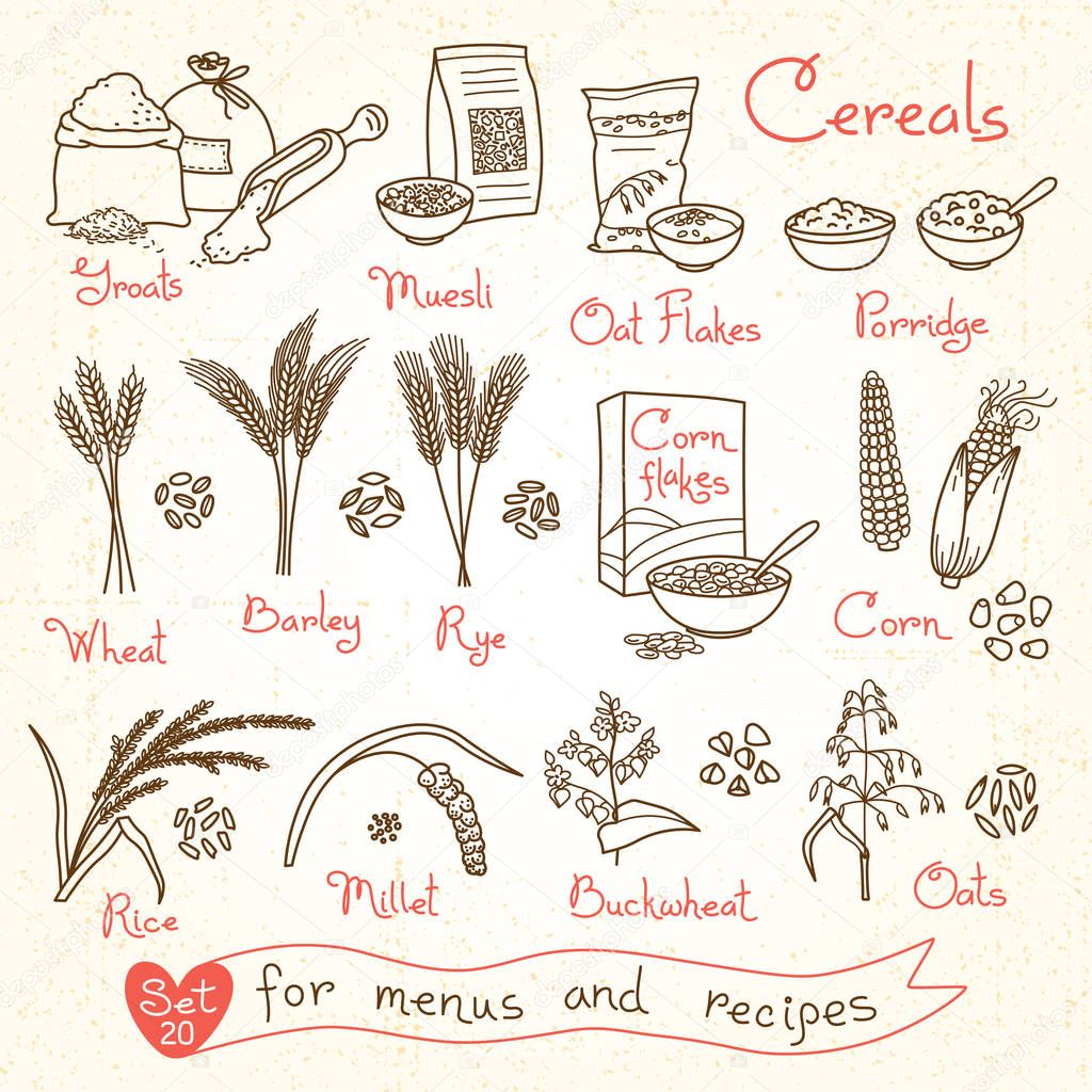 Set drawings of cereals for design menus, recipes and packing. Flakes, groats, porridge, muesli, cornflakes, oat, rye, wheat, barley, millet, buckwheat, rice, corn