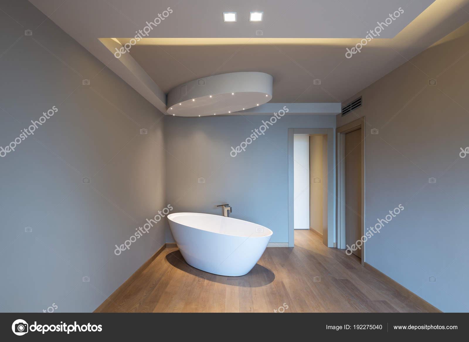 Vasca Da Bagno In Camera Da Letto : Moderna camera da letto con vasca da bagno appartamento di lusso