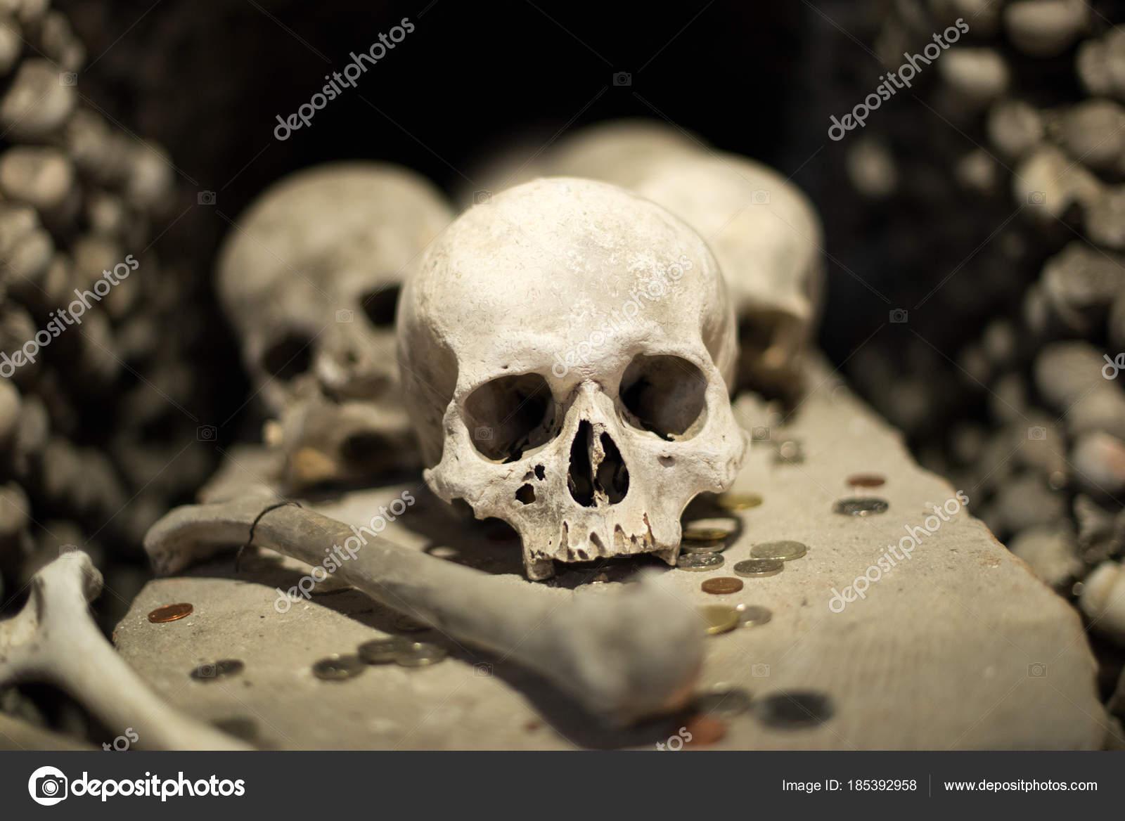 Agglomeration Of Skulls And Bones Stock Photo Luismolinero