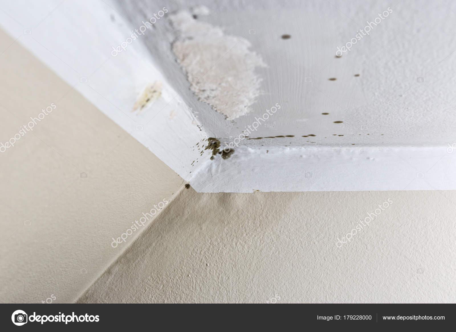 Daños causados por la humedad en una pared en casa — Foto de stock ...
