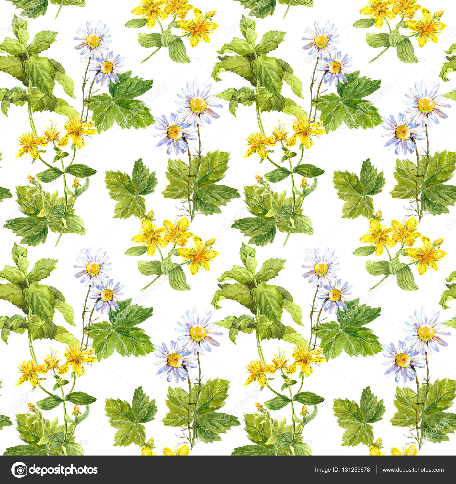 Medicinal herbs medical flowers herbal floral repeating pattern medicinal herbs medical flowers herbal floral repeating pattern watercolor stock photo mightylinksfo