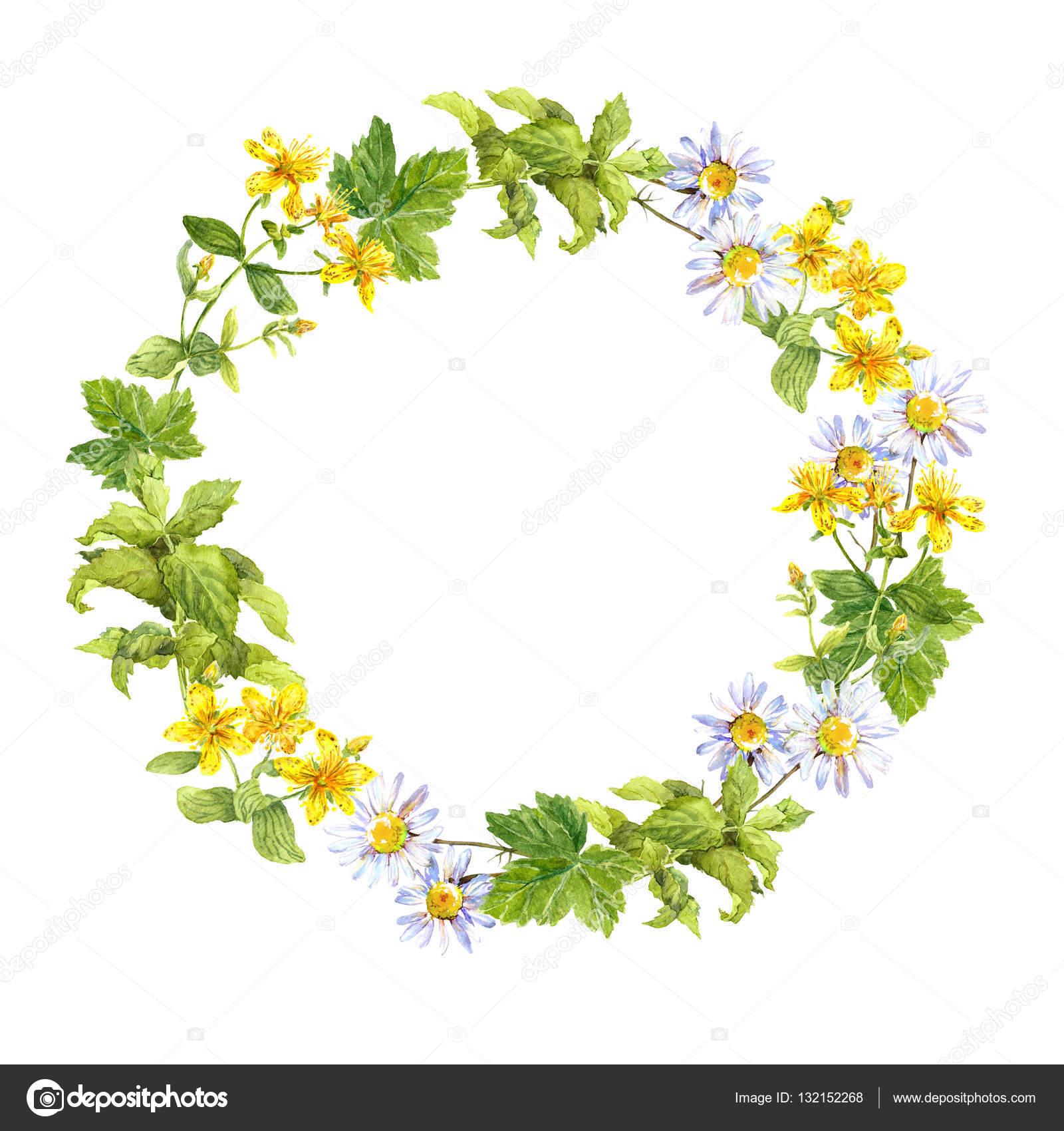 Blumengebinde. Kräuter, Wiesenblumen. Aquarell-Runde Grenze ...