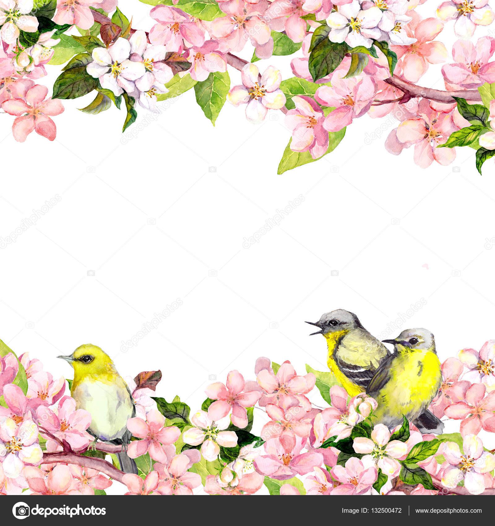 Blossom pink sakura flowers and song birds floral card or blank blossom of pink sakura flowers and song birds floral card or blank watercolor photo by zzzorikk mightylinksfo