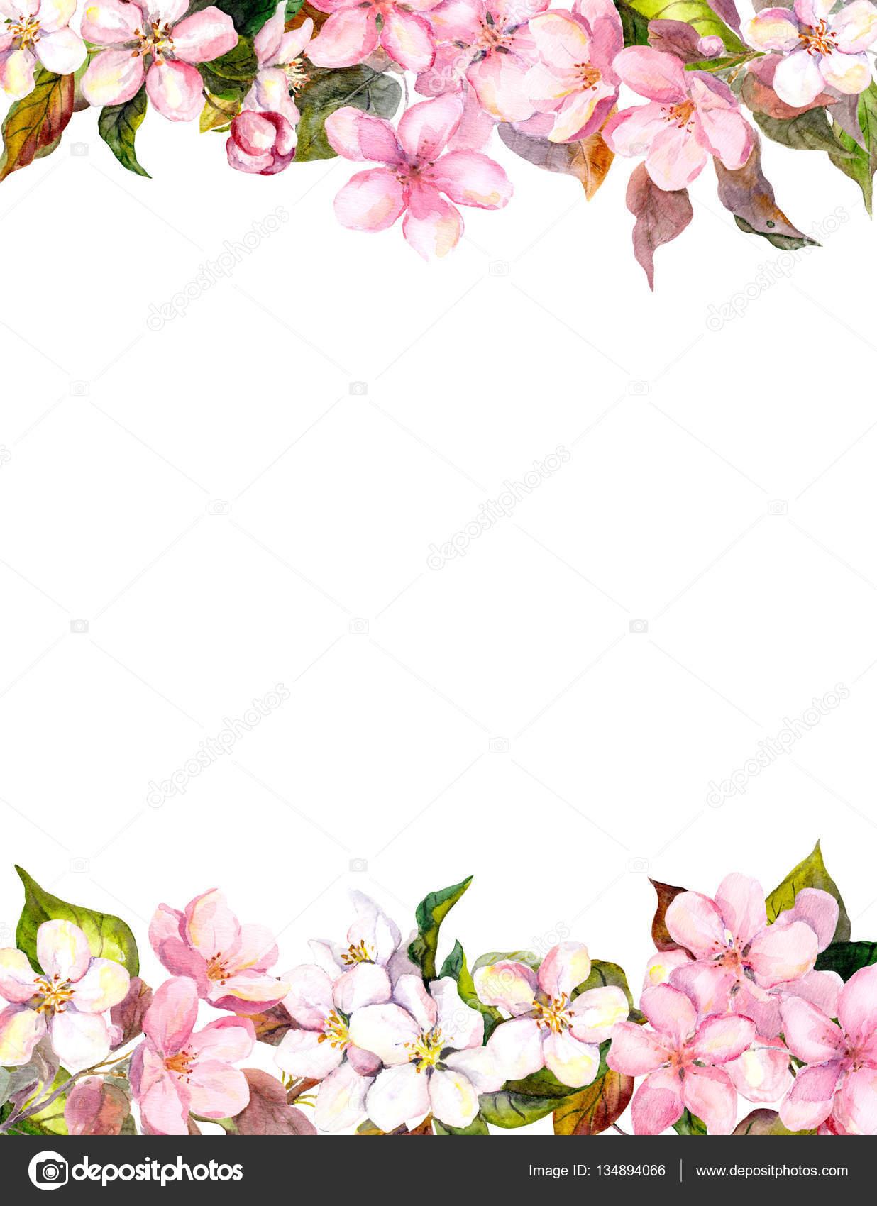 fiori rosa mela fiori di ciliegio cornice floreale per la cartolina acquerello foto stock. Black Bedroom Furniture Sets. Home Design Ideas