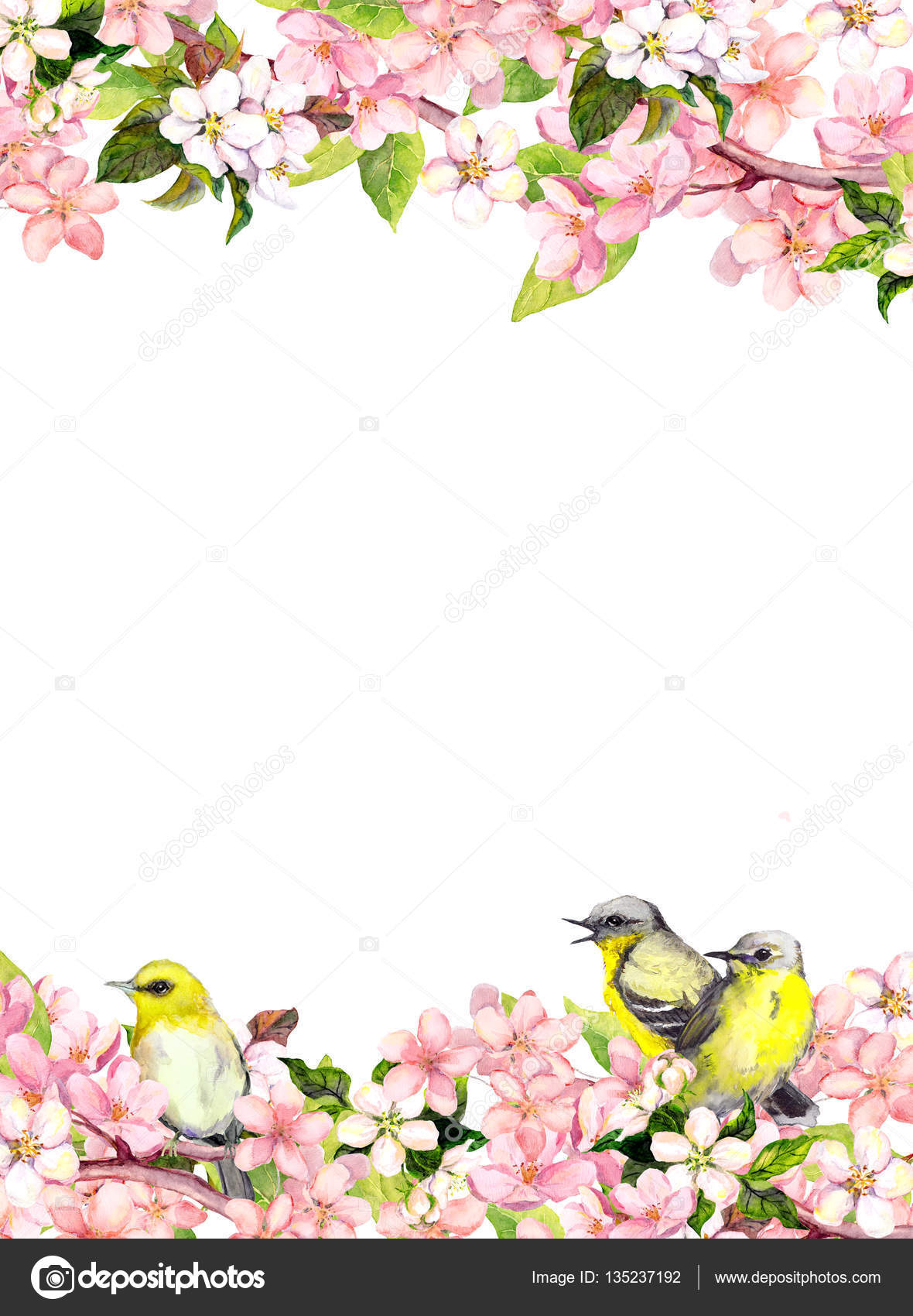 Blossom Pink Sakura Flowers And Song Birds Floral Card Or Blank