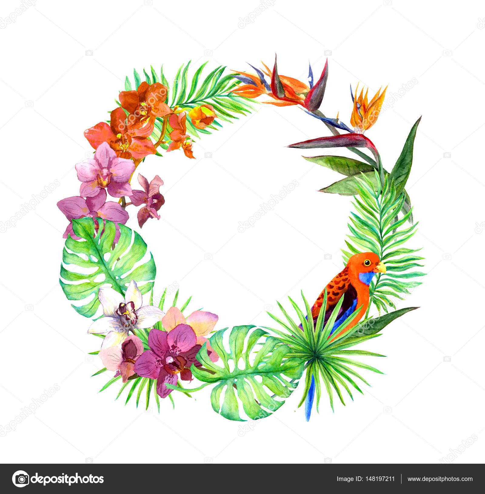 Tropische Blätter, exotische Vögel, Orchidee blüht. Kranz Rahmen ...