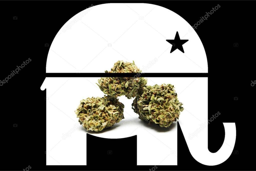 Marijuana Politics Cannabis Buds Republican Democratic Symbols