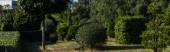 Stromy a keře na zelené trávě v parku, panoramatický záběr