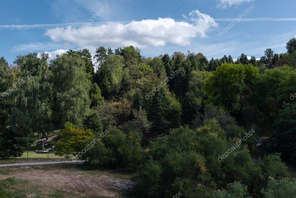 Фотообои Зеленые леса в парк и голубое небо с облаками в фоновом режиме