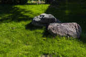 Two stones with sunlight on green grass of lawn