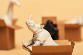 Selective focus of rhinoceros and toy animals in cardboard boxes on yellow background, animal welfare concept