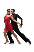 elegant, sensual couple of dancers performing tango on white background