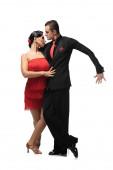 szenvedélyes, stílusos táncosok tangóznak fehér háttéren
