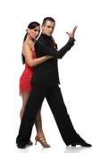 sensual, elegant dancers looking at camera while performing tango on white background