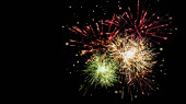 colorful festive fireworks in night sky, isolated on black
