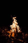 polena hořící v táboře oheň ve tmě