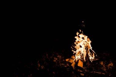 Alevler ve odunlar gecenin karanlığında kamp ateşinde