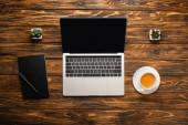 Fényképek top view laptop üres képernyőn, kávéscsésze, notebook és cserepes növények fa asztalon