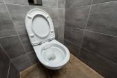 kerámia tiszta WC-csésze a modern mosdóban szürke csempe
