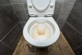 Fotografie gelbe Flüssigwaschmittel in Keramik saubere Toilettenschüssel in modernen Toiletten mit grauer Fliese